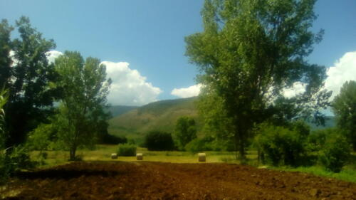 Terreni casa vitivinicola Le Orme